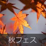 秋フェス一覧イメージ画像