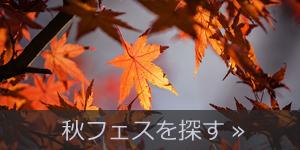 秋フェスを探す